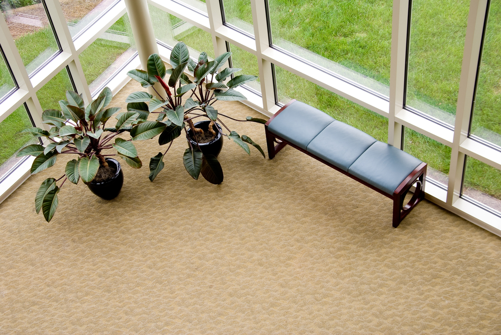 10 Easy Steps to Rug Maintenance