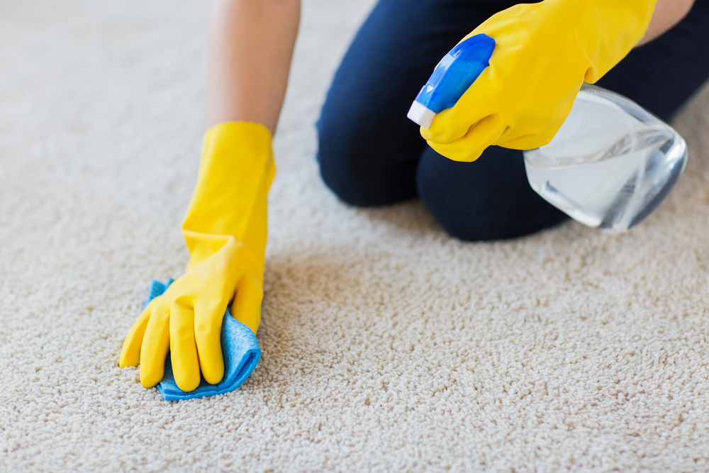 spot cleaning sisal rugs