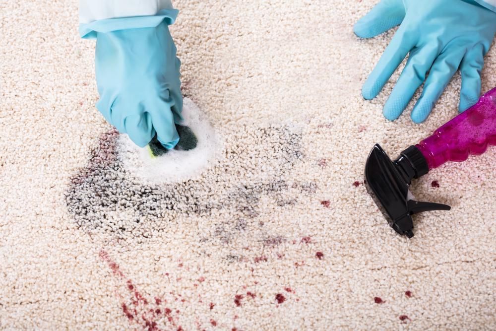 High Heat or Alkalinity rug bleed